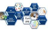 Eurice coop patent academy